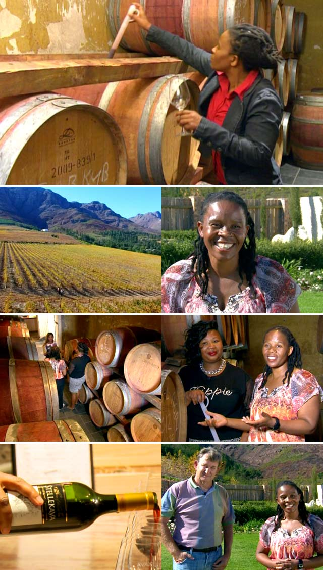 Woman winemaker of the year 2015