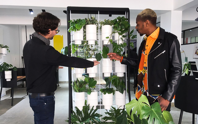 Two People Inspecting Plants